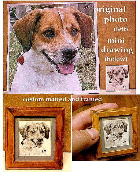 have your pet drawn from your photos!